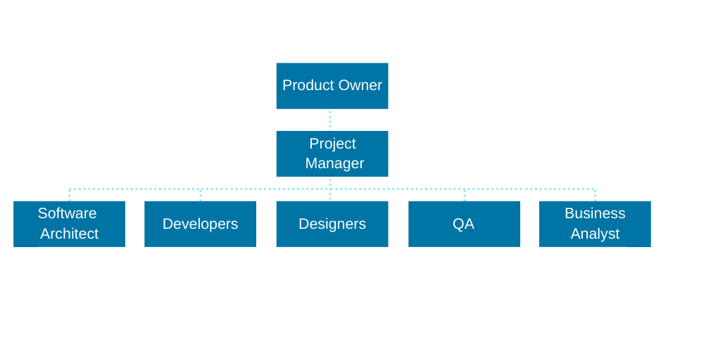 the composition of software development team