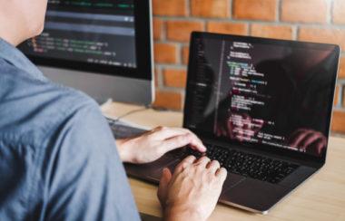 Skills for a beginner developer